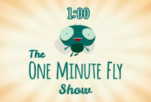 One Minute Fly